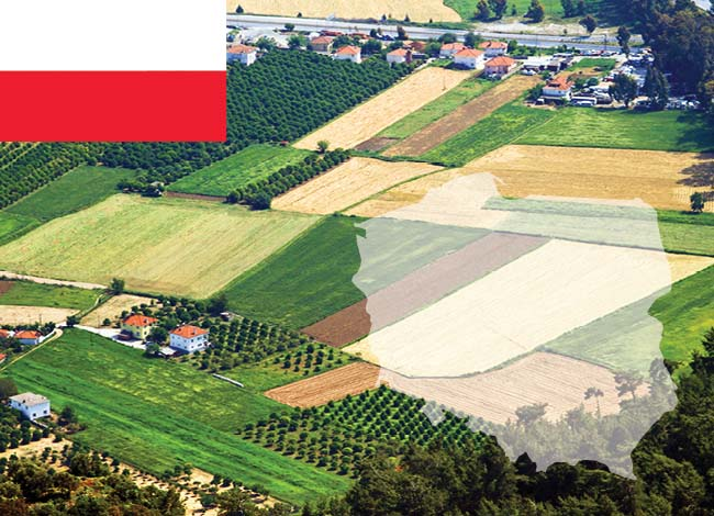 Poland and fields