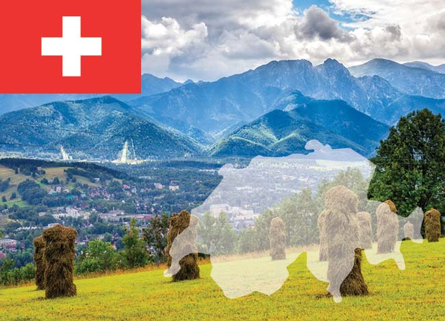 Switzerland flag and fields and mountains